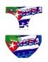 Cuba palmera
